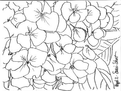 Pattern for Hydrangea Reference Photo #2